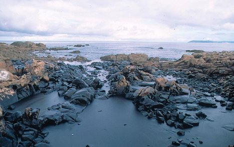 INFOGRAPHIC: World's Most Dangerous Seas | vielle | Scoop.it