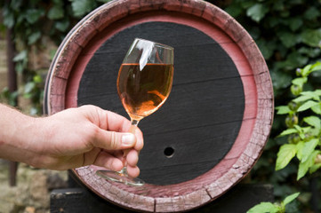 Hey MW Students! Slip this into your next paper...Additive may make wine fine for a longer time | Penn State University | Southern California Wine and Craft Spirits Journal | Scoop.it