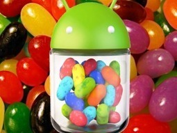 Android Jelly Bean: Most Persistent User Problems and Simple Solutions | Custom App Development | Scoop.it