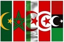 «Déclaration de Hammamet» et un projet de création d'un observatoire maghrébin du journalisme — Actualités Tunisie Focus | Pratiques journalistiques - Monde arabe | Scoop.it