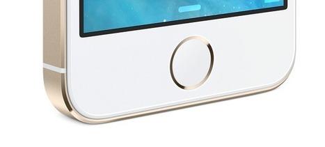 La biométrie dans l'iPhone, entre craintes et interrogations   La Biométrie   Scoop.it