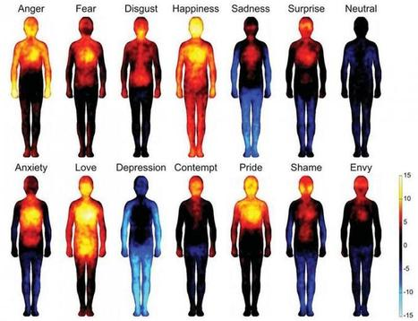 Heatmaps Reveal Where Humans Feel Certain Emotions On The Body | wellness | Scoop.it