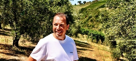 Aleandri, when the Olive Grove is a real passion | Le Marche and Food | Scoop.it