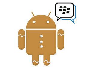 Beberapa Hal Seputar BBM Android Gingerbread | Harga dan spesifikasi ponsel pintar dan tablet | Scoop.it