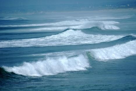 La DCNS croit en l'énergie houlomotrice | Le groupe EDF | Scoop.it