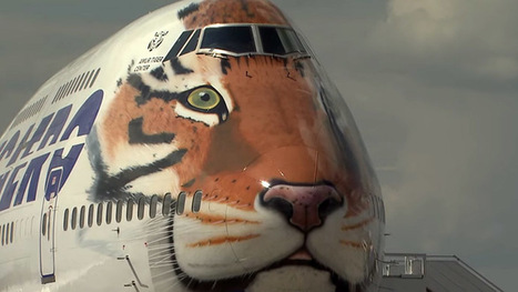 Russian air carrier gets tiger stripes, unveils new Boeing livery | Aerospace industry watch - Paris Air Show | Scoop.it