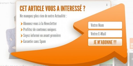 Pippity le meilleur Pop-up de Newsletter pour votre WordPress ? | WordPress France | Scoop.it