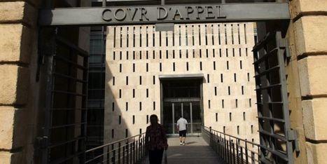 L'adoption d'un enfant conçu par PMA validée par la cour d'appel d'Aix | DROIT 2015 | Scoop.it