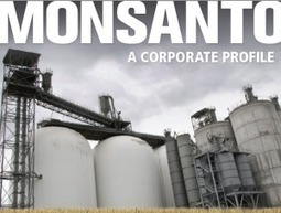 MONSANTO: A CORPORATE PROFILE From Saccharin to GE Seed - Peddling Chemicals for Food, Agriculture, War | Towards A Sustainable Planet: Priorities | Scoop.it