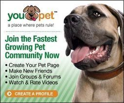 Limiting Pages on a Website - GeeklessTech | Social Media, Marketing and Promotion | Scoop.it