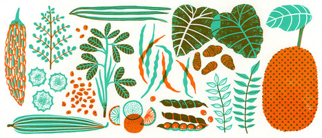 A Guide to Indian Vegetables | Gardening is more than Digging the Dirt | Scoop.it