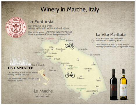 Wine tasting in Marche, Italy!   Wines and People   Scoop.it