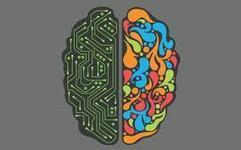 Are You Left-Brained or Right-Brained? Does it Really Matter? | HR | Scoop.it