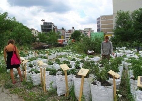 Aktuelle Trends – Öko-Nomaden & Urban Farming: Mobiltät, Leben & Arbeiten in der grünen Stadt? | B E R U F E B I L D E R | Big Transition | Scoop.it