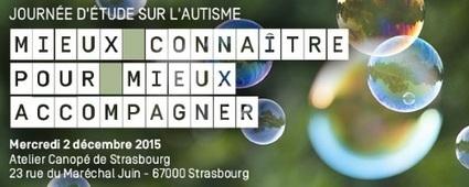 Entretien avec le docteur Catherine Chabaux, pédopsychiatre | Canopé Académie de Strasbourg | Digital games for autistic children. Ressources numériques autisme | Scoop.it
