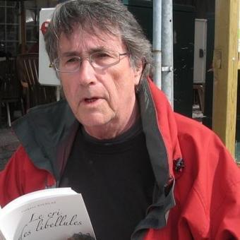 Le cri des libellules: un roman inspiré d'un fait divers à Messancy   J'écris mon premier roman   Scoop.it