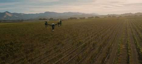 Why 2015 is the year agriculture drones take off | food security and climate change | Scoop.it