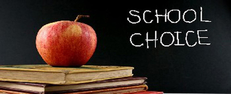 Are charter schools and vouchers a good thing for American public schools? | Learning Matters | School Perspectives | Scoop.it