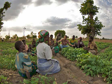 Why Is the #Obama Administration Suddenly So Interested in African Farms? #GMO #Monsanto | Social Media, the 21st Century Digital Tool Kit | Scoop.it