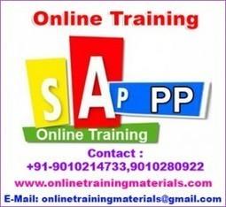 SAP PP online training institute in Ameerpet, SAP PP Online Training Institute from Hyderabad India.   Online Training Materials   Online Training   Scoop.it