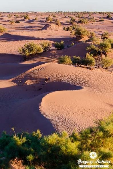 Dunes et oasis du sud marocain | Les déserts dans le monde | Scoop.it