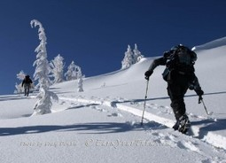 Backcountry News: Skiing Down, Telemarking Up! | Telemark skiing | Scoop.it