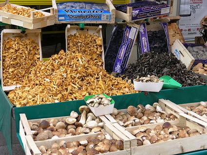 Bon à savoir: Les faux produits français du terroir | Produits de France | Scoop.it