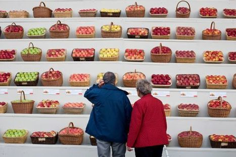 Des fruits et des légumes contre la déprime | Seniors | Scoop.it