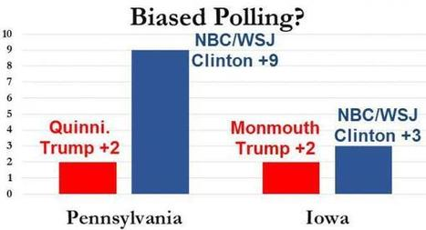 More Questions Emerge About Skewed Hillary Polls | Zero Hedge | Everything You Need to Know           Re: Bernie Sanders | Scoop.it