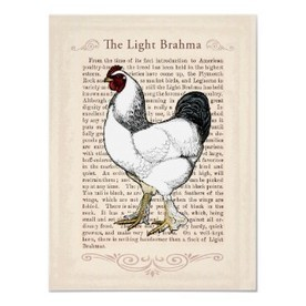 Vintage Chicken and Rooster Posters – Decor for the Country Kitchen | Back yard Chickens | Scoop.it