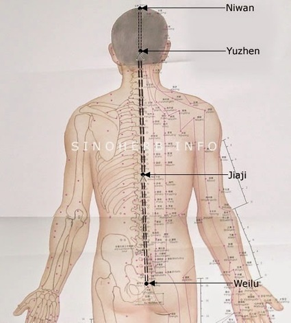 Healing, Yoga and Qigong: Energy (Qi) Cultivation Method to clear blockages | Qigong, Yoga and Healing | Scoop.it