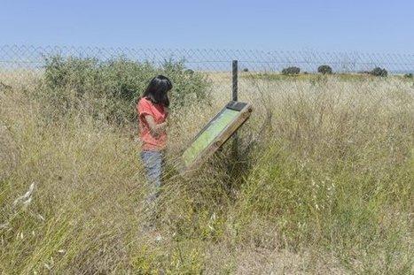 Diputación recuperará los restos romanos abandonados en La Cocosa | LVDVS CHIRONIS 3.0 | Scoop.it