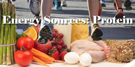 Energy Sources: Proteins | Health, Fitness and Well-being | Scoop.it