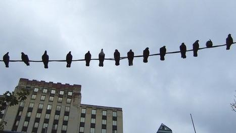 Twitter Study: Count Clickthroughs, Not Retweets   Medios De Comunicación Digitales   Scoop.it