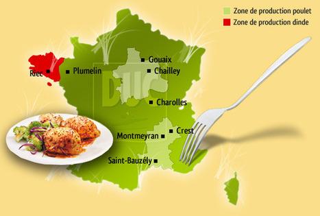 Dans la tourmente de la filière volaille, Duc maintient son cap.    agro-media.fr   Actualité de l'Industrie Agroalimentaire   agro-media.fr   Scoop.it