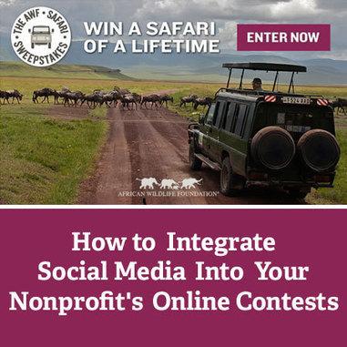 How To Integrate Social Media Into Your Nonprofit's Online Contests | Nonprofits & Social Media | Scoop.it