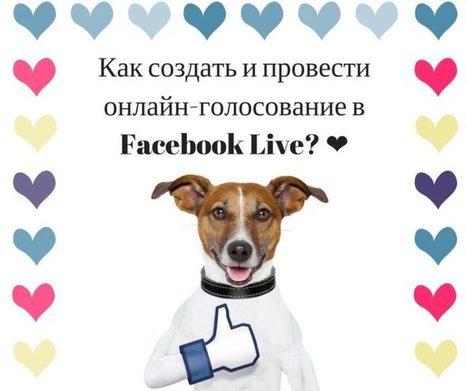 Как создать и провести онлайн-голосование в Facebook Live? | Социальные сети и бизнес | Scoop.it
