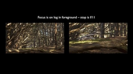 Shooting 4k RAW with an FS700 | Focusing, Composition and Exposure Challenges by Art Adams | Cinematography, Photography and Filmmaking Thoughts | Scoop.it