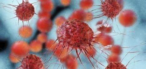 Científicos españoles descubren cómo matar las células del cáncer | Salud&Medicina | Scoop.it