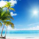 Zap Seasonal Depression: Sunshine Cheer - Reclaim your Vigor, Vitality & Vibrancy   How to make your own website or blog using Wordpress   Scoop.it