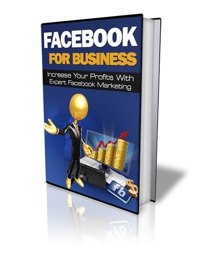 Facebook For Business - Comprehensive E-Course | Make Money Online and Useful Tools For Any Online Business | Scoop.it