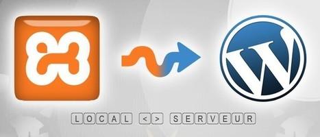 Nicolas Porion Auto-entrepreneur et Développeur Web   Infos utiles pour le Webmarketing   Scoop.it