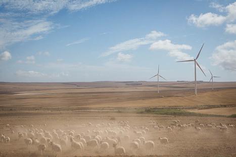 COP21 : l'Afrique du Sud change de cap et se met aux énergies renouvelables | L'Afrique australe (Afrique du Sud, Namibie, Botswana, Lesotho-Swaziland, Zimbabwe, Mozambique) | Scoop.it