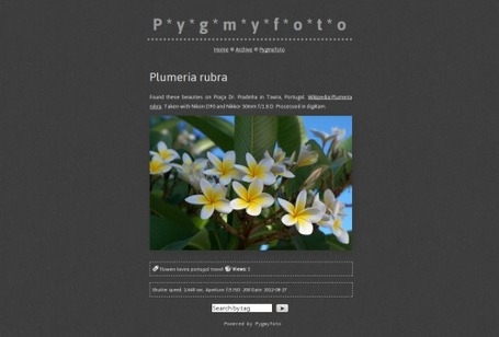 Pygmyfoto - Publishing Photos on the Web | The *Official AndreasCY* Daily Magazine | Scoop.it