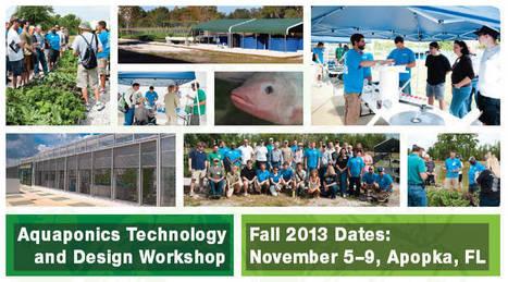 Aquaponics Design and Technology Workshop   Earthan Group Pty Ltd   Integrated Aquaculture   Scoop.it