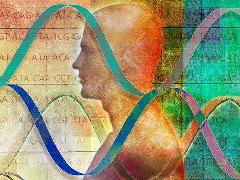 The Power Of Genes, And The Line Between Biology And Destiny | The future of medicine and health | Scoop.it