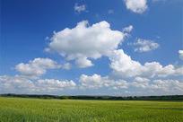 Reserva Ecológica Nacional: Ministra Assunção Cristas contra a Conservação da Natureza | Science News | Scoop.it