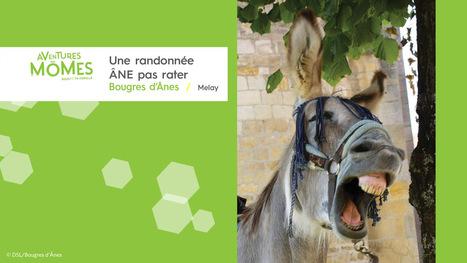 Aventures Mômes, une randonnée âne pas rater !   Destination Saône-et-Loire   Scoop.it