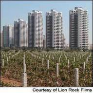 Unfiltered: Chinese Wine in the Voice of Russell Crowe | Vitabella Wine Daily Gossip | Scoop.it