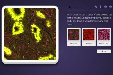 Quand le grand public se fait chercheur sur le cancer | Science techno | Scoop.it